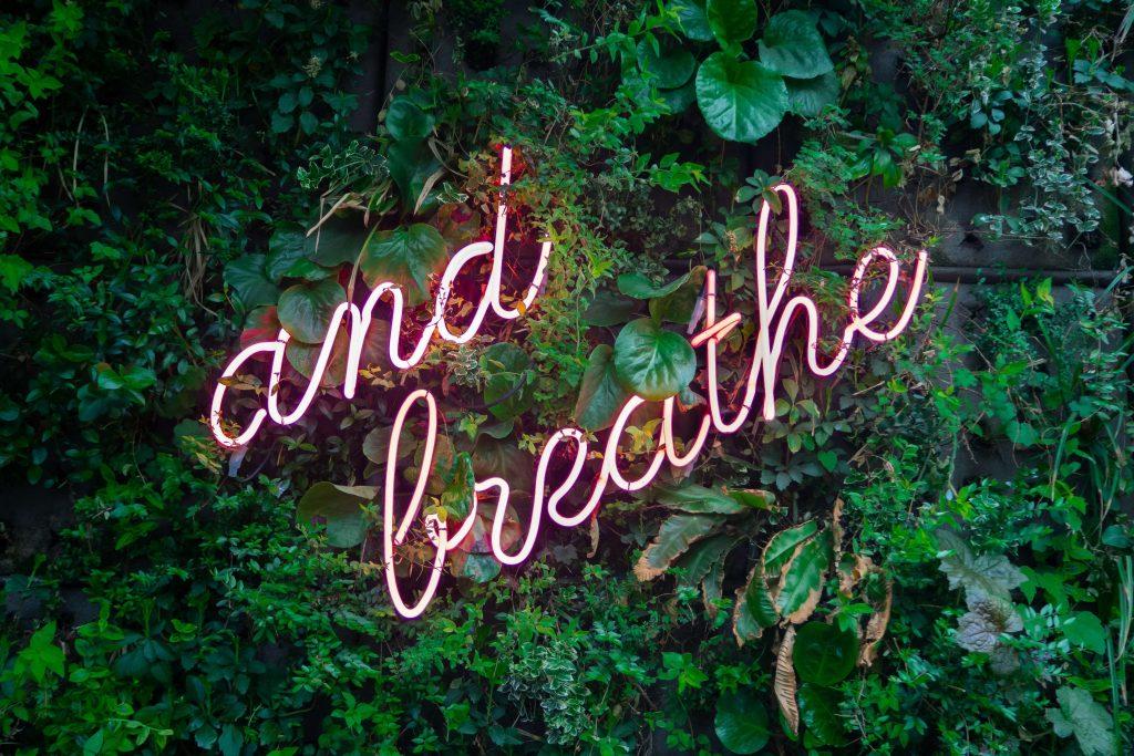 Neonowy napis na ścianie roślin