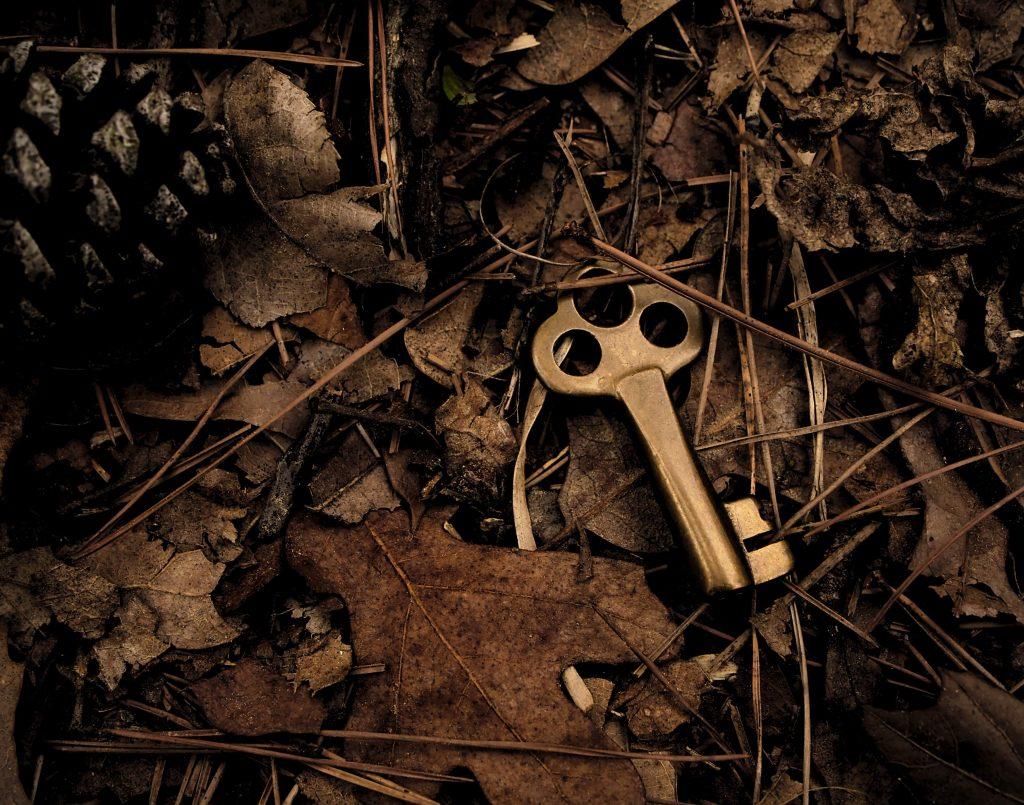 Klucz leżący w stercie liści